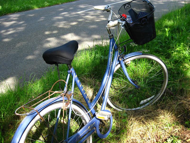 Bunny Mummy A Sunny Cycle Ride