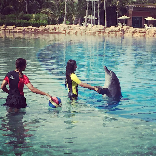 nia sharma play with dolphin pic