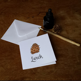 www.AliceDrawsTheLine.co.uk :: Larch card