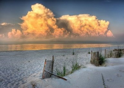 Gulf Shores Alabama Condo Sales, Vacation Rental Homes By Owner