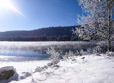 Snow-covered shore alongside a beautiful lake with a blue sky, mountain range, and snow-frosted tree