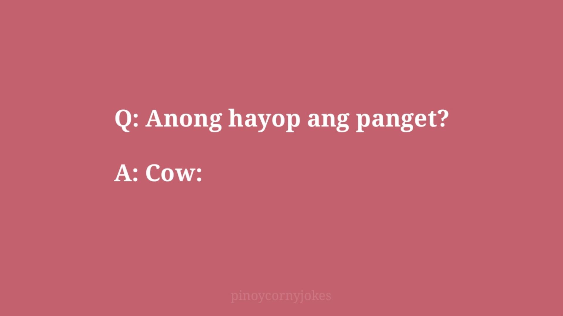 cow pinoy jokes qa