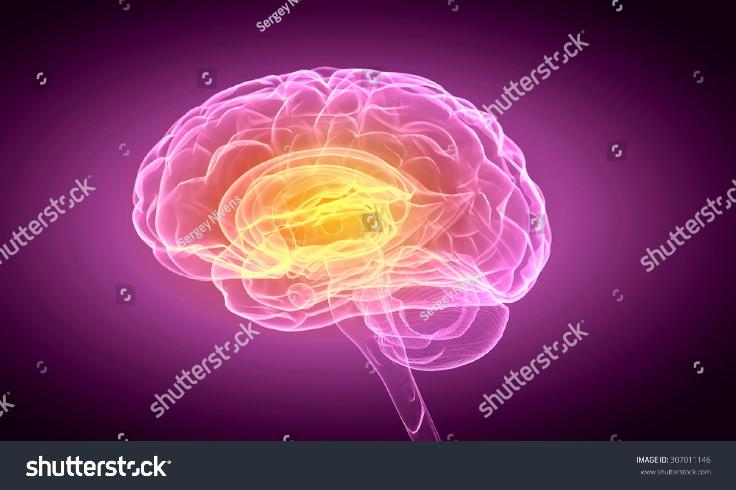 The Best Exercises To Improve Brain Function