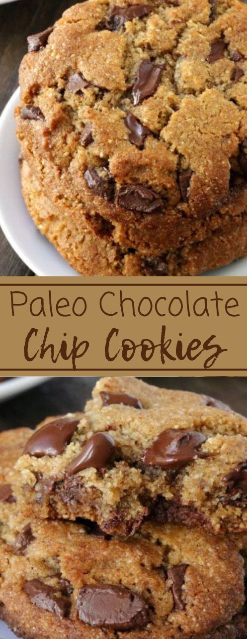Perfect Paleo Chocolate Chip Cookies #vegan #cookies #paleo #diet #healthyrecipes