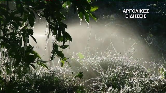 Με παγετό μπήκε το 2020 στην Αργολίδα - Πόσο έπεσε η θερμοκρασια