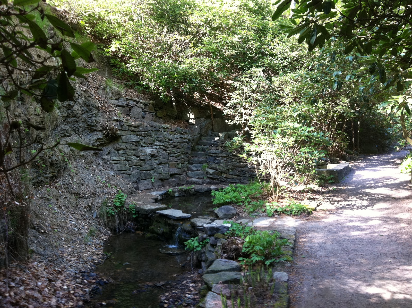 Sofiero europas vackraste park i ar
