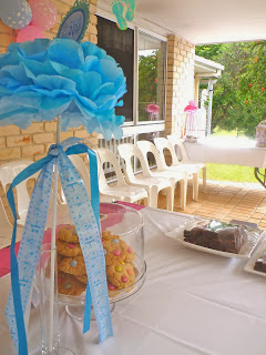 Blue & Pink Baby Shower Party