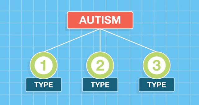 autism spectrum therapies reviews