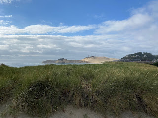 View over dune grass with Cape Kiwanda in the distance.