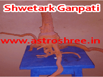 shwetark ganpati prayog in astrology by astrologer