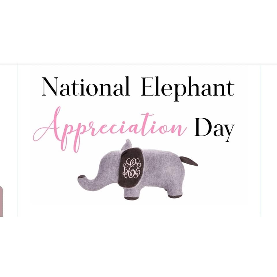National Elephant Appreciation Day Wishes Lovely Pics