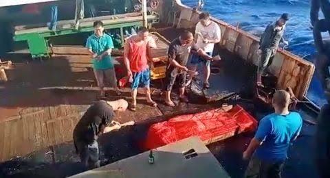 Jasad 3 WNI ABK Kapal China Dibuang ke Laut, Meninggal Dengan Tubuh Membengkak
