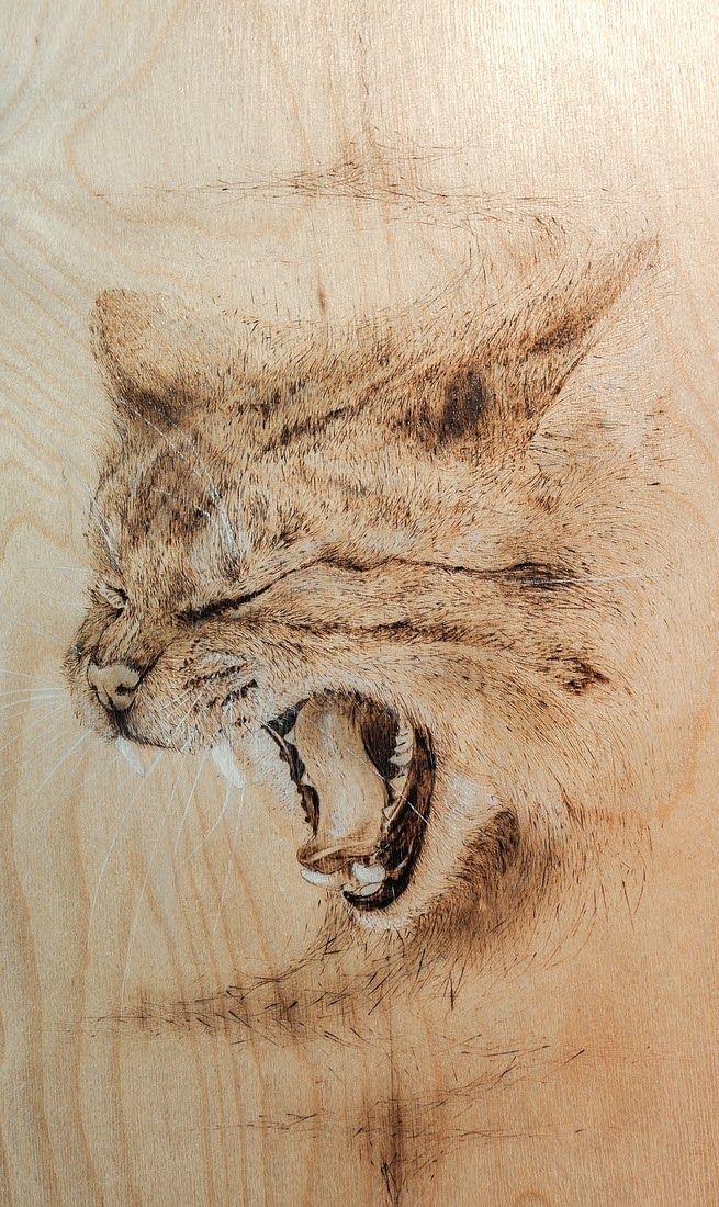 03-The-Cat-Eben-Cavanagh-Rautenbach-LeRoc-Animal-Drawings-using-Pyrography-www-designstack-co