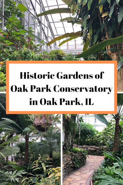 Wandering the Gardens of Oak Park Conservatory in Oak Park, Illinois