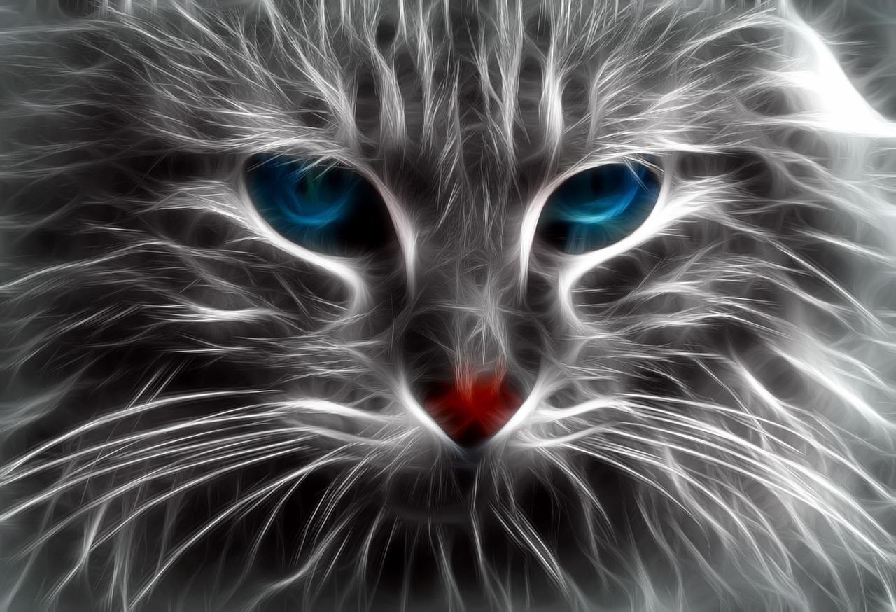 ilustrasi kucing lukis