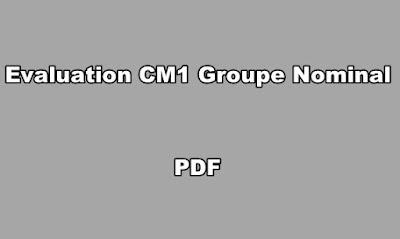 Evaluation CM1 Groupe Nominal