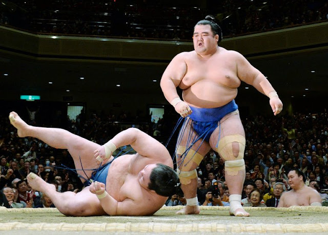 Discussing the Business of Sumo Wrestling
