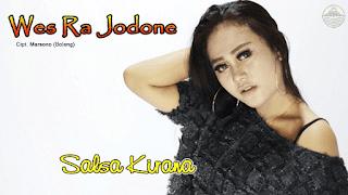 Lirik Lagu Wes Ra Jodone - Salsa Kirana