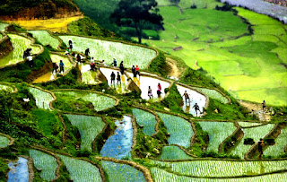 What makes you spend 5 days for a trip to explore Sapa & Mu Cang Chai? 2