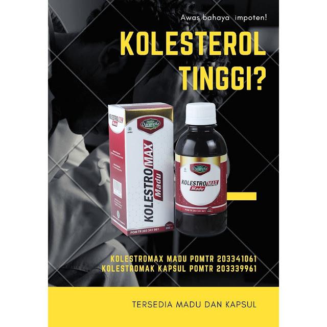 obat kolesterol aman
