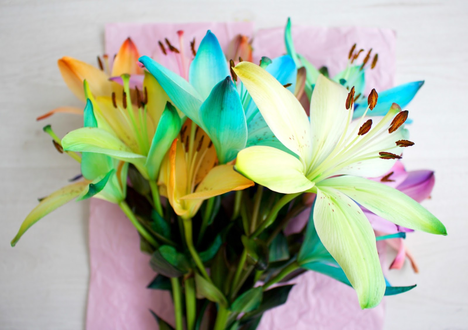 Rainbow Lilies. Blue lilies. Purple lilies. Orange lilies. Green lilies. Multi coloured lilies. spring lilies. spring flowers. Blossoming Gifts flowers. Blossom gifts rainbow lilies. Giveaway, competition. Blog competition. Blog giveaway. Product review. Flower bouquet. 100 Ways to 30, Uk life and style blog, brands, collaboration. Lily pollen.  Canon 700d photos