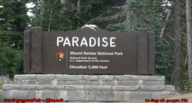 Paradise Mount Rainier National Park