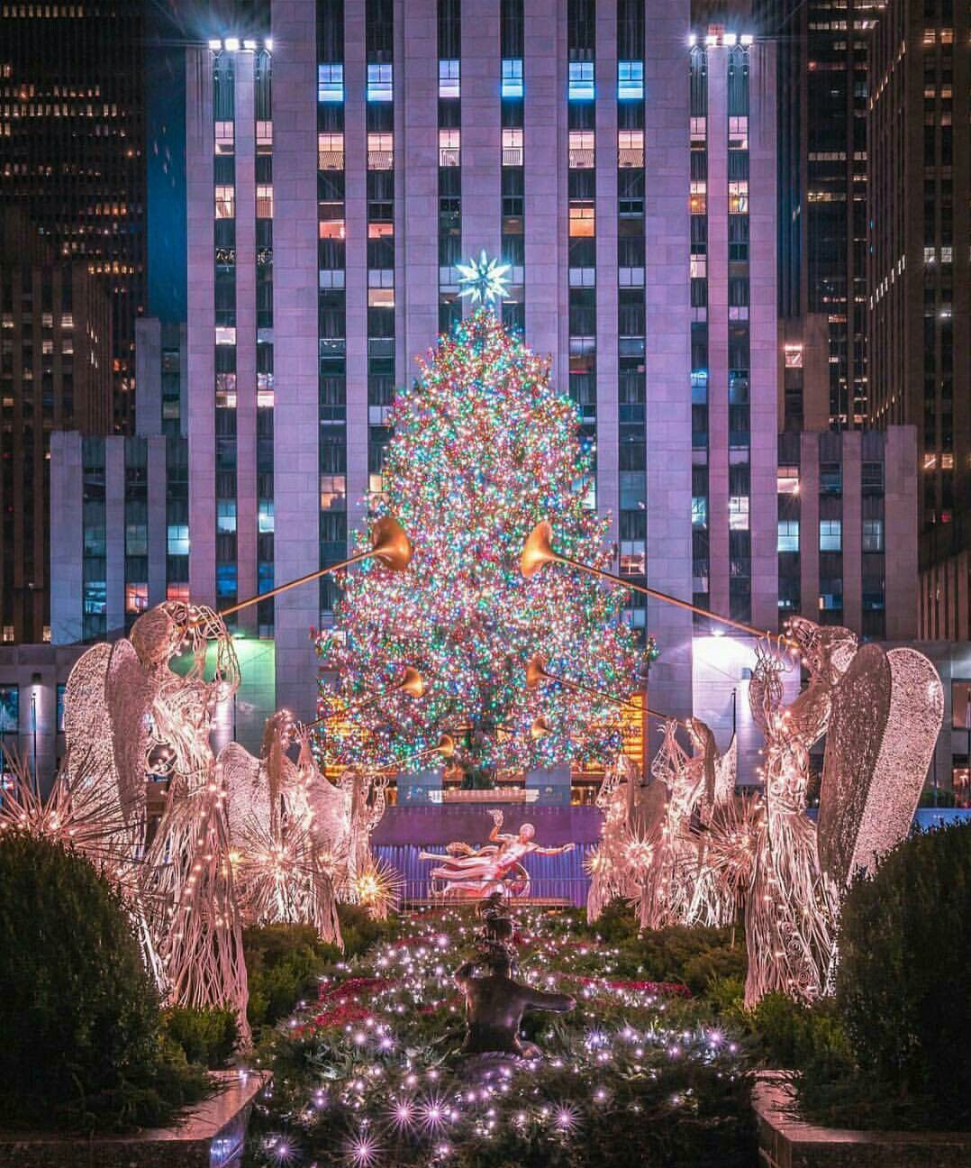The Most Beautiful Christmas Trees In The World - Vestellite