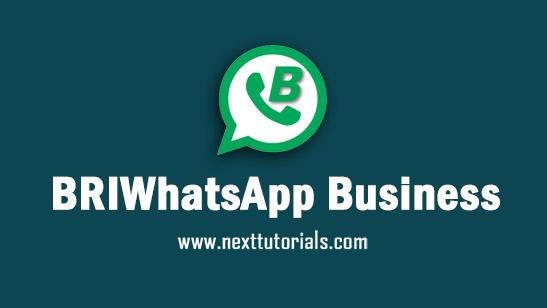 BRIWhatsApp Business v6.0 Apk Mod Latest Version Android,Install Aplikasi BRIWA Business Plus Anti Banned Terbaru 2021,donwload tema whatsapp mod 2021