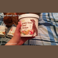 The Honest Kitchen Dehyrdated Dog Food in Single Serve Cups Review