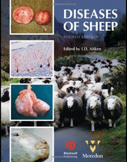 Diseases of Sheep 4th Edition