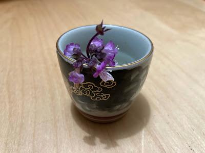 Thai basil flowers in a saki cup