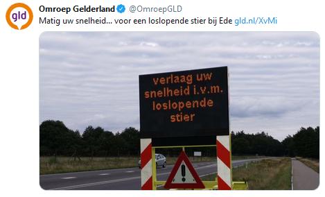 https://www.omroepgelderland.nl/nieuws/2420495/Matig-uw-snelheid-voor-een-loslopende-stier-bij-Ede