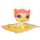 Littlest Pet Shop Pet Pairs Cat (#1521) Pet