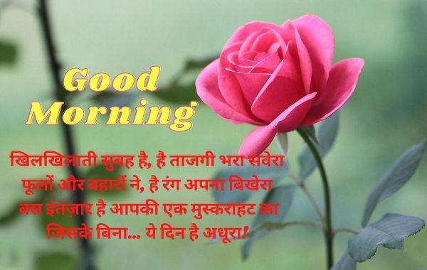 Motivation Good Morning Wishes Message Status with images in Hindi