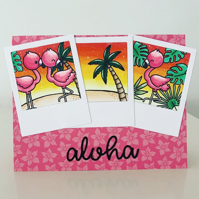 Fabulous Flamingos, Tropical Scenes and Loopy Letters Dies Tropical Summer Themed card by Jo Smith