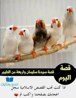 قصه سيدنا سليمان واربعة من الطيور