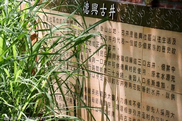 彰化芬園|2019德興社區桐花祭|桐花生態園|鳳梨古道|德興古井