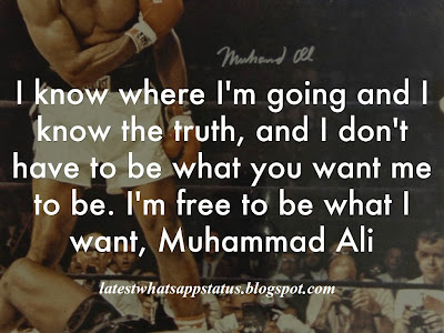 I know where I'm going and I know the truth, and I don't have to be what you want me to be. I'm free to be what I want