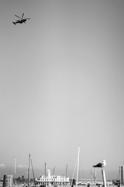 equilibrio asimétrico, foto de Carlos Larios