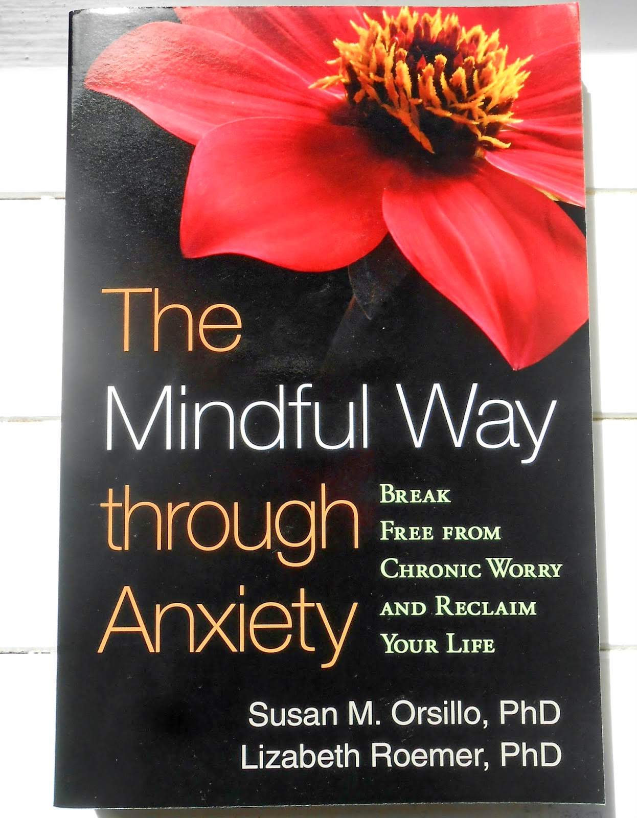 Mindful Way Through Anxiety Orsillo Roemer