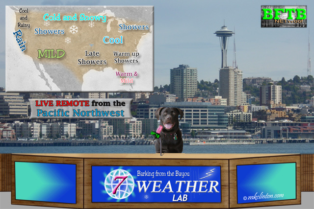 BFTB NETWoof Weather forecast with our Weather Lab Paisley