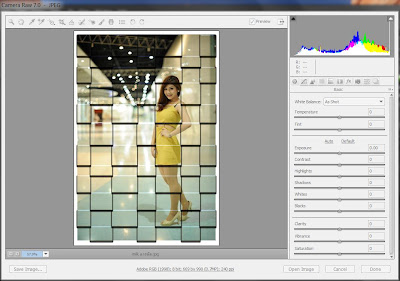 phtoshop cs6 : camera raw screen