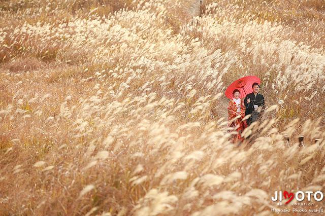 曽爾高原で前撮り撮影