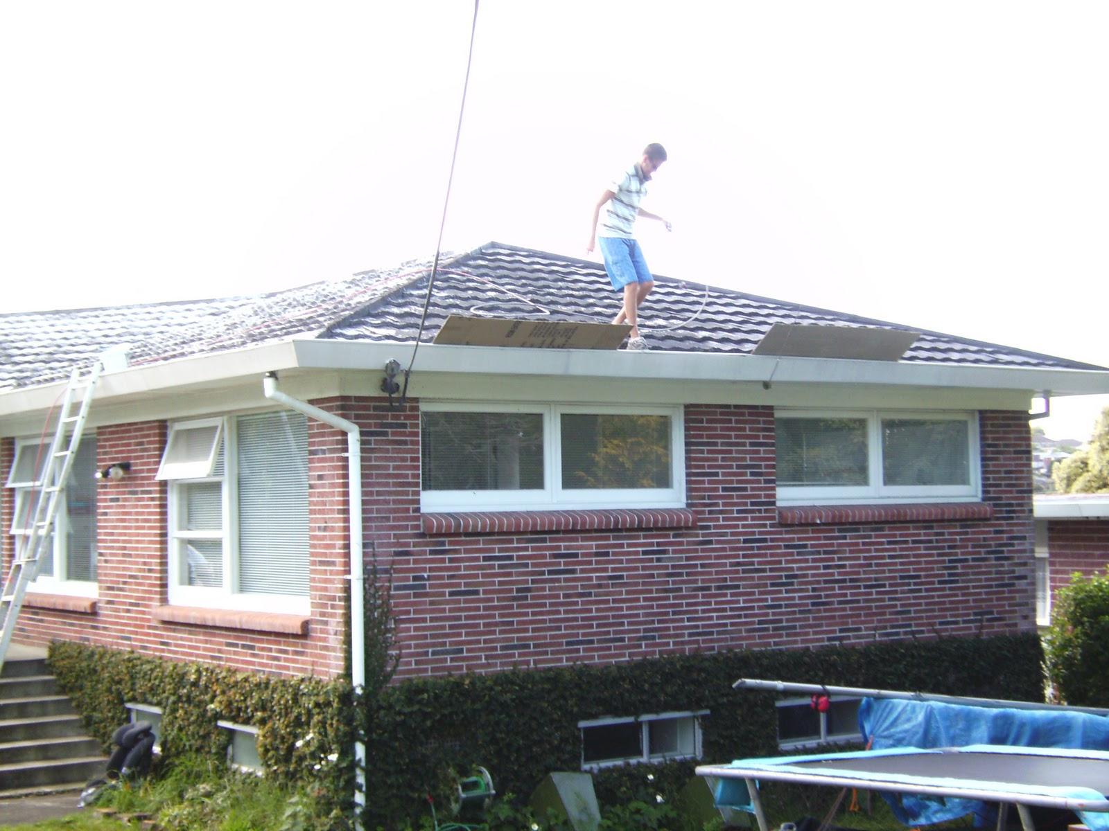 Rosie Posies Creations Diy Update Roof Painting
