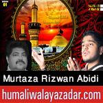 http://www.humaliwalayazadar.com/2016/10/murtaza-rizwan-abidi-nohay-2017.html