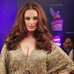 Evelyn Sharma Hot Ramp Walk at Kingfisher Ultra Style Week 2014