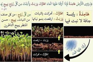 لفهم آيات القرآن الكريم 9.jpg