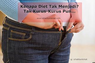 kenapa diet tak menjadi