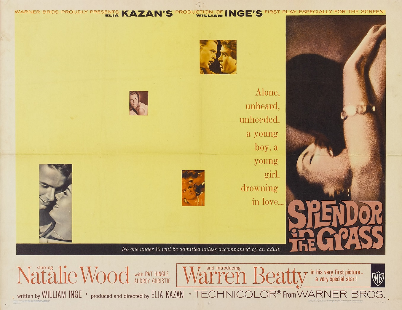 SPLENDOR IN THE GRASS (1961) WEB SITE