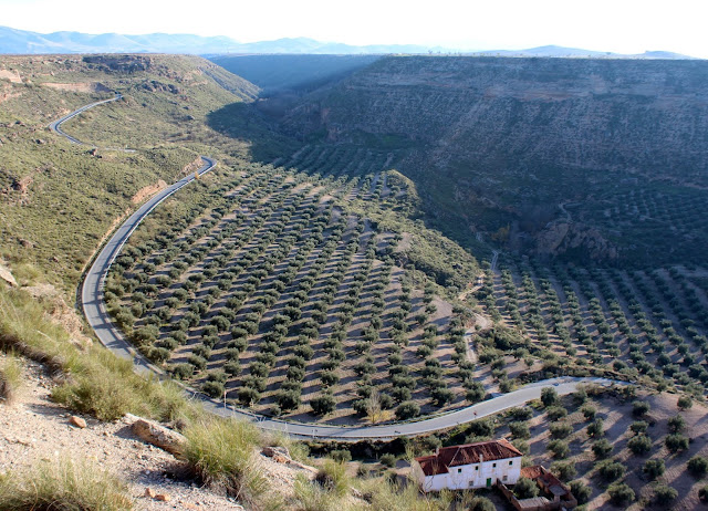 Carreteras serpenteantes. Guadix